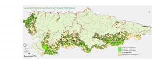 Bosques en espacios protegidos