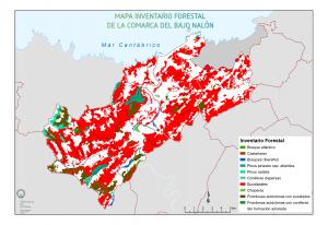 Bajo Nalón - Mapa forestal